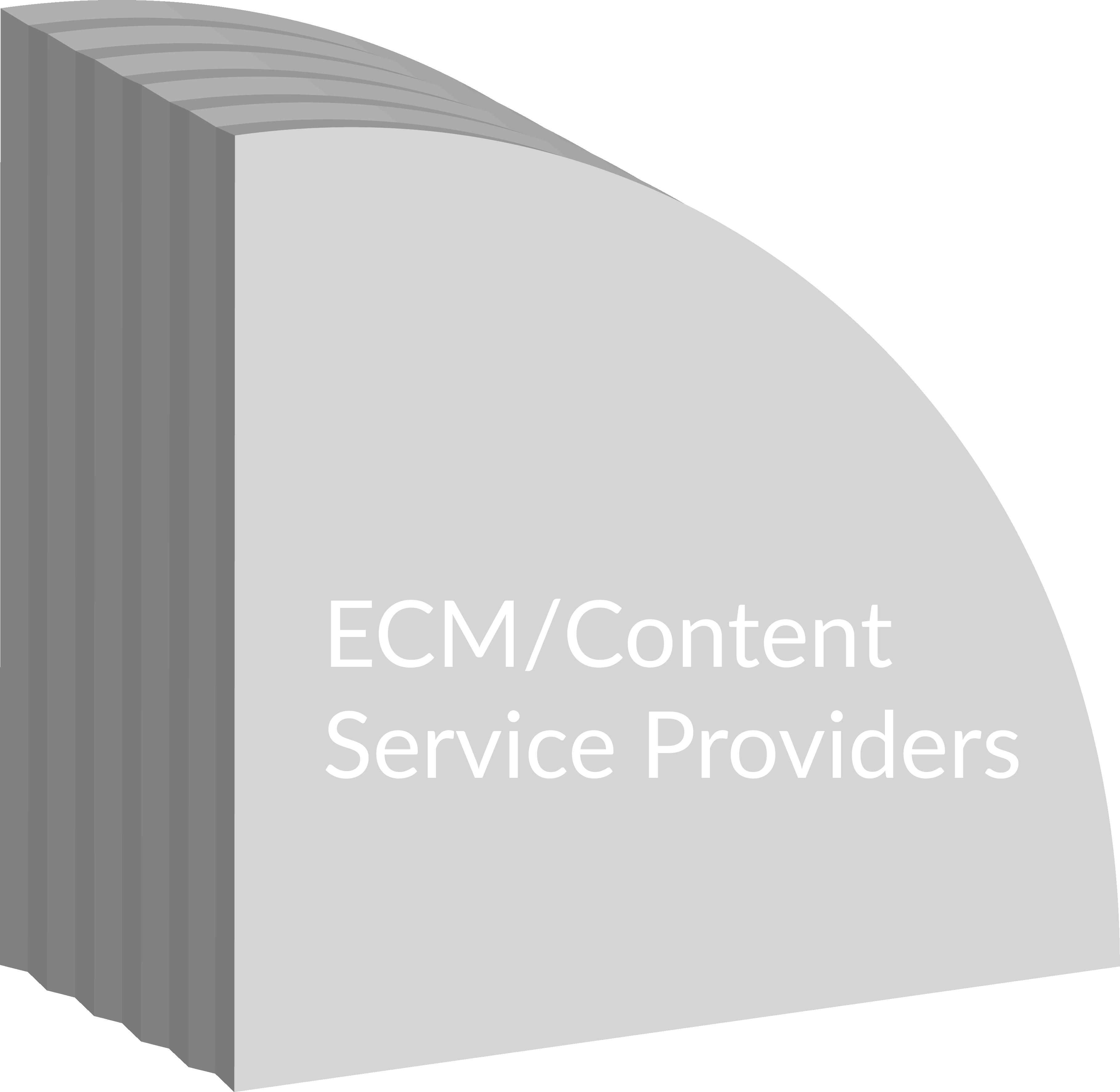ECM/Content Service Providers slice